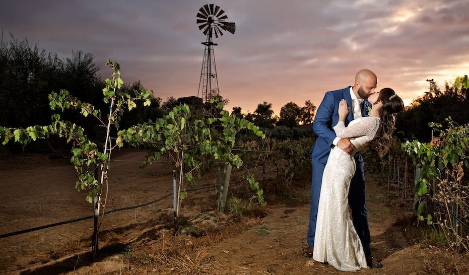 wedding couple with windmill